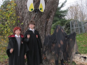 Harry, Ron and Dementor Vash