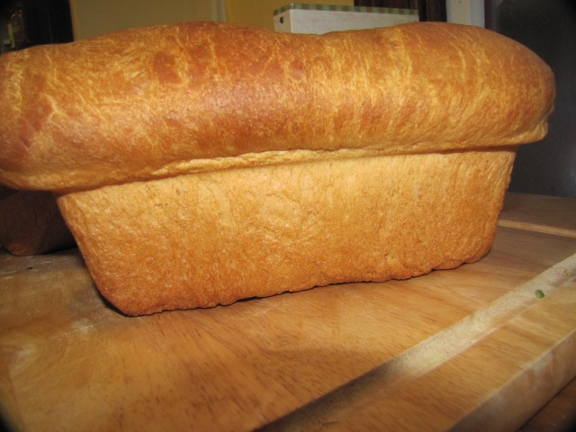 bread out of the loaf pan