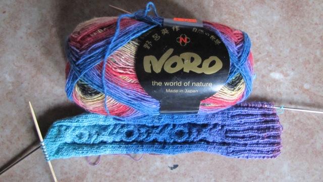 Noro skein next to sock