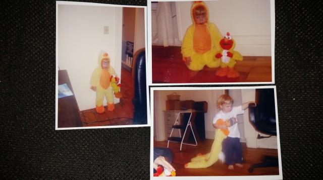 Chicken Vash and Chicken Elmo