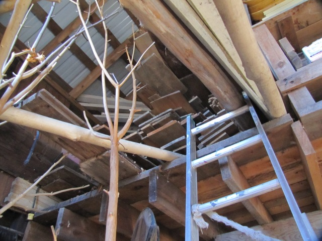 back door construction 016